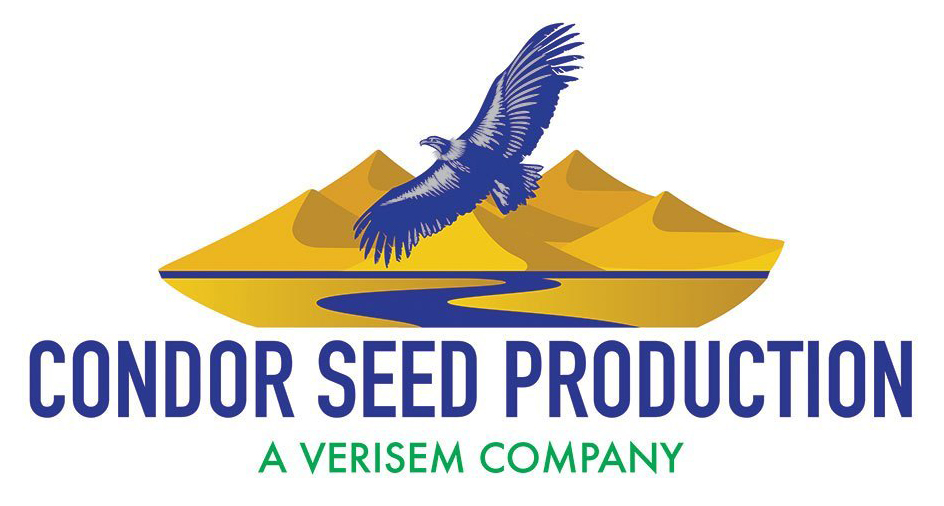 Condor_Seed_Production