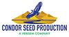 Condor_Seed_logo_web