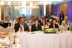 APSA_Midterm_Meeting_2019_by_Oil (16)