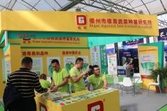 Guangdong_Seed_Expo_14
