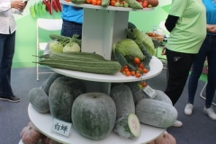 Guangdong_Seed_Expo_19