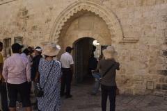 Israel_Study_Tour_byKuna_27Sep_8