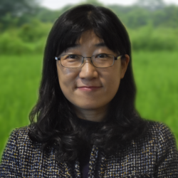 Mi-Hee Yang