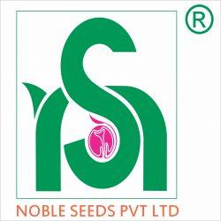 Logo with company name