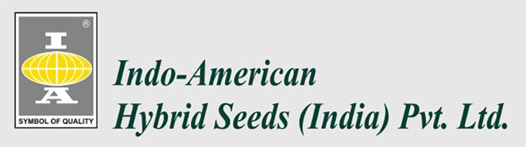 Imdo_American_logo